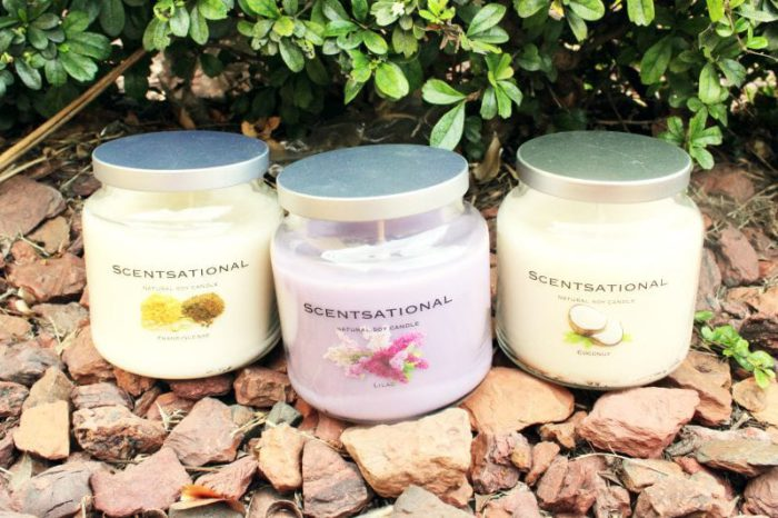 Wholesale Scentsational Jar Soy Candles Frankincense, Coconut and Lilac