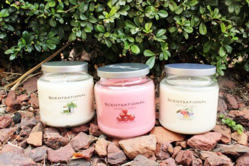 Wholesale Scentsational Jar Soy Candles Sage, Macintosh Apple and Clean Linen