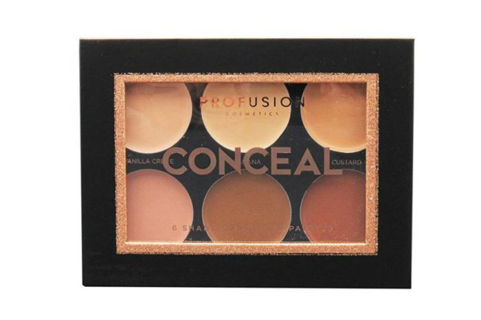 Profusion 6 Shade Concealer Palette (5111)