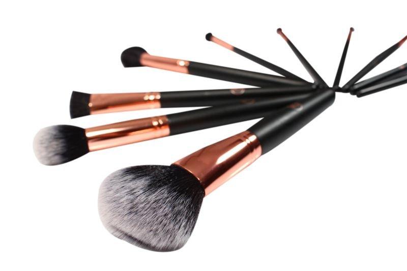Lurella Cosmetics Brush 10 Piece Set - On The Move And Travel Case